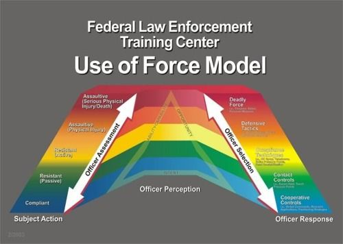Federal Law Enforcement Training Center - Use of Force Model